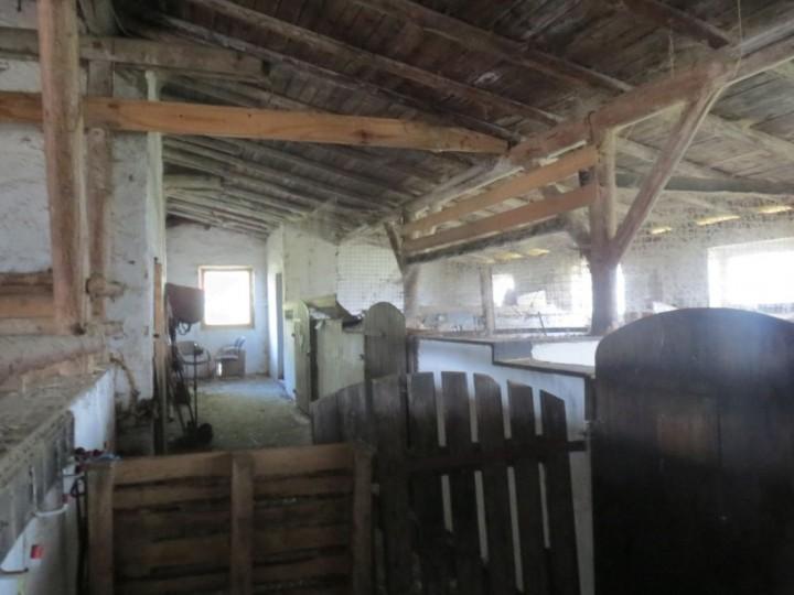 VERMIETETE  Pferdestallanlage in Leubnitz zu verkaufen