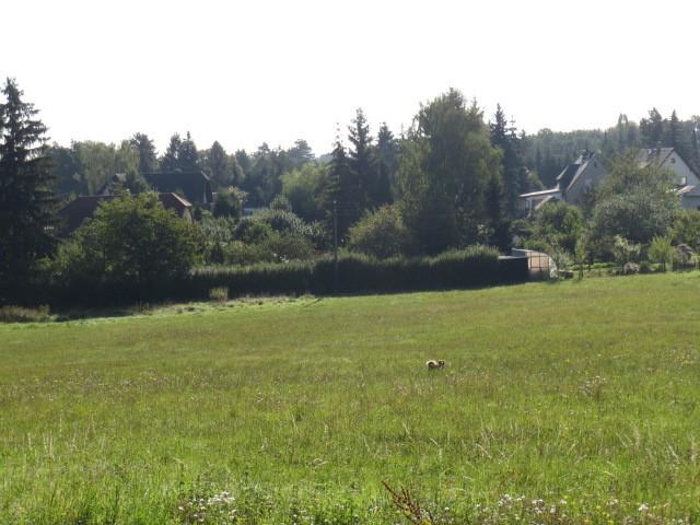 Bauplatz f?r Einfamilienhaus in Plauen Am Birkenh?bel